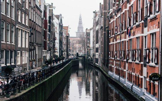 Wybierz się do Holandii wygodnym busem